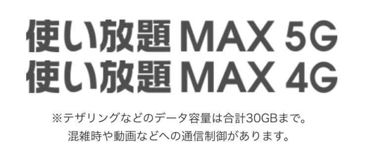 au 使い放題MAX 4G/5G